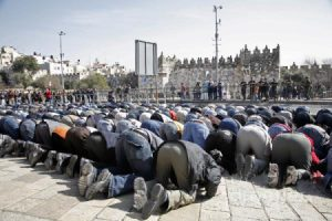 rezo musulman